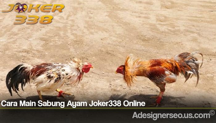 Cara Main Sabung Ayam Joker338 Online