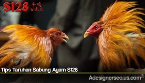 Tips Taruhan Sabung Ayam S128